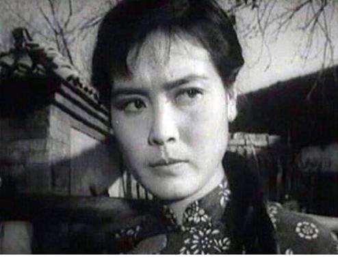 杨雅琴的个人经历