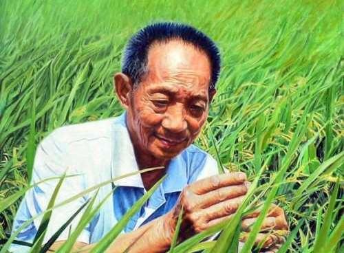 袁隆平是中科院院士还是中国工程院院士
